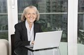 Portrait of happy senior businesswoman with laptop sitting at table