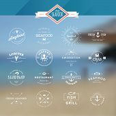 set of labels and badges for seafood
