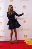 LOS ANGELES - AUG 25:  Julia Roberts at the 2014 Primetime Emmy Awards - Arrivals at Nokia Theater a