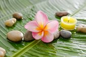 Set of frangipani and stones, candle on wet banana leaf