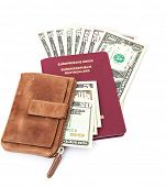 German passport with dollar notes and wallet