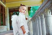 pic of little angel  - Little boy with angel wings on old city background - JPG