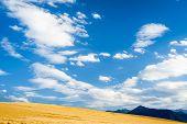 Yellow Blue Horizon