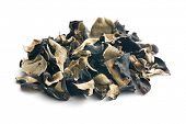 image of judas  - Dried chinese black fungus - JPG