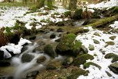 Mountain brook among green stones in winter forest