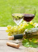 White and red wine glasses and bottle with bunch of grapes in sunny garden