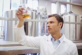 image of beaker  - Focused scientist examining beaker with beer in the factory - JPG