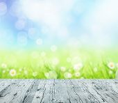 Spring abstract background with wooden planks and blurry background