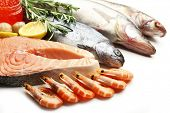 picture of catch fish  - Fresh catch of fish and other seafood close - JPG