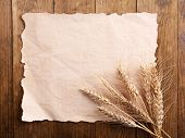 Spikelets of wheat with paper on wooden background