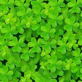 Green clovers vector seamless pattern
