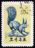 Postage Stamp North Korea 1962 Eurasian Red Squirrel