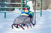 Baby Boy Sits On Sled
