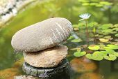 foto of lilly  - The Stones in garden with lilly water - JPG