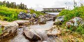 Creek Near Johnson Lake