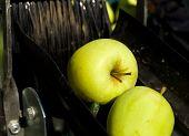 Apple Harvesting Machine