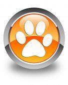 Animal Footprint Icon Glossy Orange Round Button