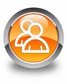 Group Icon Glossy Orange Round Button
