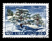 Lebanon 1965 Ceders of friendship