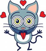 Funny cat feeling madly in love