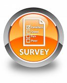 Survey Glossy Orange Round Button