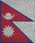picture of stingray  - Nepal Flag painted on stingray skin texture - JPG