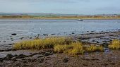 Low Tide at Topsham