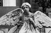 pic of cemetery  - More than 100 years old statue - JPG