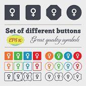 pic of gender  - Symbols gender Female Woman sex icon sign Big set of colorful diverse high - JPG