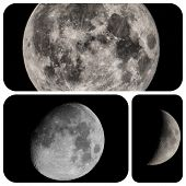 image of full_moon  - Collage of moon views seen with a telescope including full moon gibbous and quarter - JPG