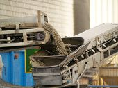 stock photo of hoppers  - a conveyor belt throwing cement gravel off the truck - JPG