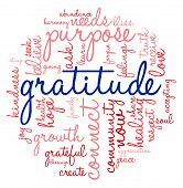 picture of gratitude  - Gratitude word cloud on a white background - JPG