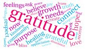 stock photo of gratitude  - Gratitude word coud on a white background - JPG