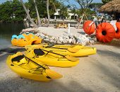 picture of paddling  - The kayaks - JPG