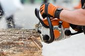 picture of man chainsaw  - Close up of male hands cutting trunk with chainsaw - JPG
