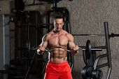 picture of mature men  - Muscular Mature Man Doing Heavy Weight Exercise For Biceps In Modern Fitness Center - JPG