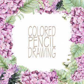 pic of pencils  - Square frame with beautiful spring flowers and plants drawn by hand with colored pencils - JPG