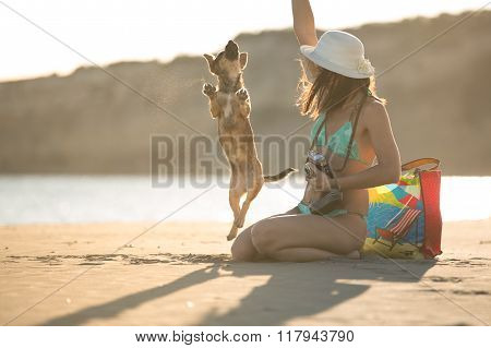 Young woman playing with dog pet on beach during sunrise or sunset.Hipster girl and dog having fun