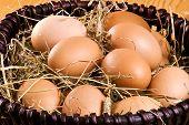 Fresh Eggs In The Basket
