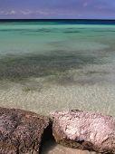 Praia de coral