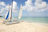 Hobie Catamaran Sailboats