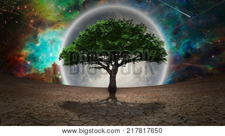poster of Green tree in arid land. Full moon in the vivid sky. 3D rendering. Some elements credit NASA.