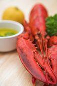 Lobster & Lemon - Shallow Dof