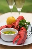 Whole Lobster - Shallow Dof