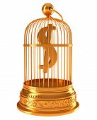 Us Dollar Currency Symbol In Golden Birdcage