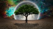 Green tree in arid land. Full moon in the vivid sky. 3D rendering. Some elements credit NASA. poster