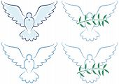 stock photo of noah  - Line art illustration of white dove in 4 versions. No transparency and gradients used. - JPG