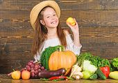 Farm Activities For Kids. Girl Kid Farm Market With Fall Harvest. Child Celebrate Harvesting. Kid Fa poster