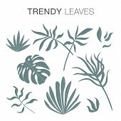 Modern Trendy Plants And Leaves In Trendy Earthy Hues poster