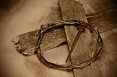 stock photo of thorns  - closeup of a representation of the Jesus Christ crown of thorns - JPG